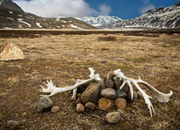 Abandoned In Alaska