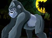 救猿猴逃脱猎人