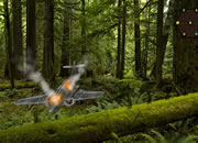Plane Crashed Forest Escape