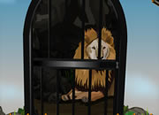 Rescue the Lion From Forest