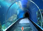 Escape Sea Aquarium
