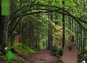 逃离维因森林