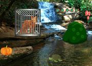 Escape The Wild Fox