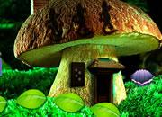 Mushroom Fantasy Forest Escape