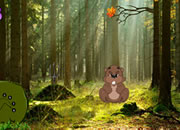 Beaver Forest Escape