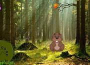 海狸森林逃脱