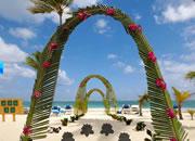 逃离婚礼海滩