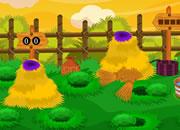 小鸡农场逃离