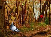 逃离昏暗森林
