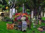 逃离废弃的墓地
