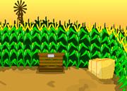 逃离玉米迷宫