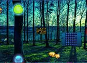 Bubble Forest Escape