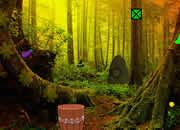 感恩节森林逃离