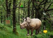 逃离犀牛森林
