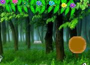 松鼠森林逃脱
