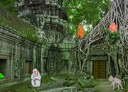 逃離遺棄猴子神殿