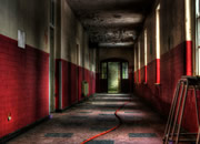 Distorted Asylum