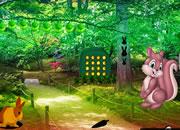 淘气兔子花园逃脱