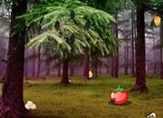 树林逃脱-