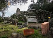 逃离撒丁墓