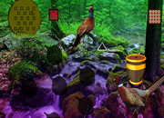 Pheasant Forest Escape