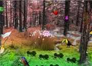 Bird Forest Escape