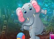 顽皮大象救援