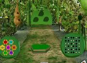 Zucchini Garden Escape