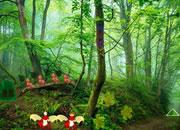 逃离幻想内陆森林