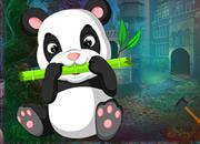 Guzzle Panda Rescue