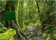 鬣蜥森林逃离