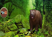 Grizzly Bear Forest Escape