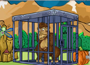 Locked Up Gorilla Rescue