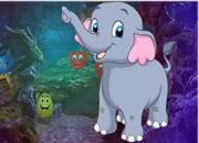 摇摆的大象救援