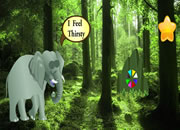 喂饥渴的大象