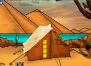 寻找沙漠金骆驼