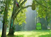 青蛙王森林逃脱