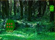部落女孩森林营救