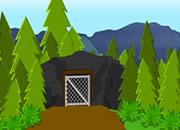 Mountain Top Escape