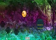 森林廢墟探險逃離