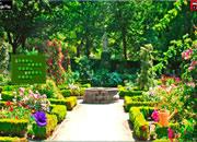 City Botanic Garden Escape