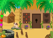 Bactrian Camel Escape