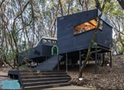 Architecture Forest House Rescue