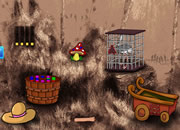 Emu Escape From Cage