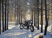 冬季森林逃离