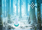 Snow Flake Fall Forest Escape