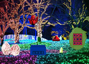 Christmas Light Park Escape