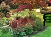 Mossy Garden Escape