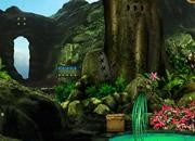 神秘森林逃离5