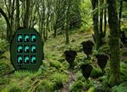 逃離生態森林